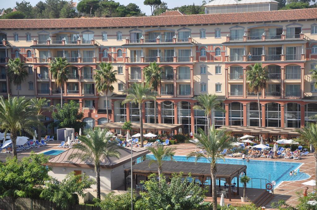 Fachada interior con palmeras y piscina