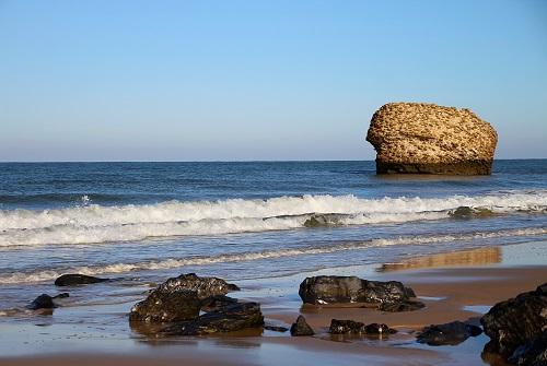 Playa en el Parque Nacional de Doñana