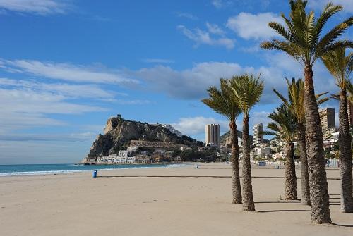 Playa con palmeras y vista de la ciudad junto al mar